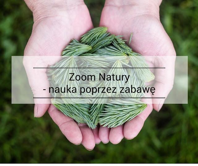 zoom_natury