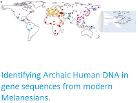 http://sciencythoughts.blogspot.co.uk/2016/03/identifying-archaic-human-dna-in-gene.html