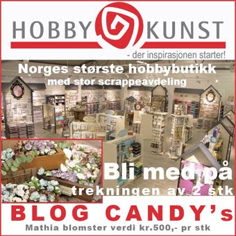 Se vår BlogCandy her!