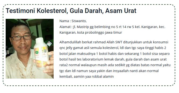 Cara Meningkatkan Hb Darah Dengan Cepat Paling Ampuh dan Aman ~ Testimoni QNC JELLY GAMAT