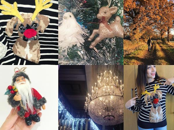 Life Through Instagram | December
