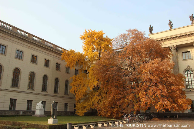 Linden tree in autumn foliage, statues of Max Planck, Nobel Prize winner and Theodor Mommsen, historian. Facade of Humboldt Uni as background.