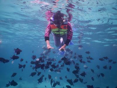 snorkling pulau rubiah