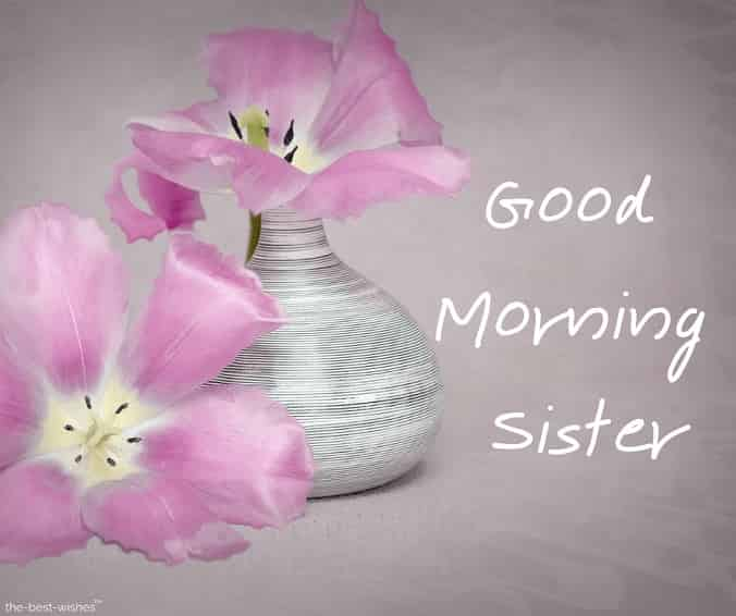 good morning sister photo hd