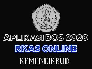 gambar aplikasi BOS 2020 rkas kemendikbud