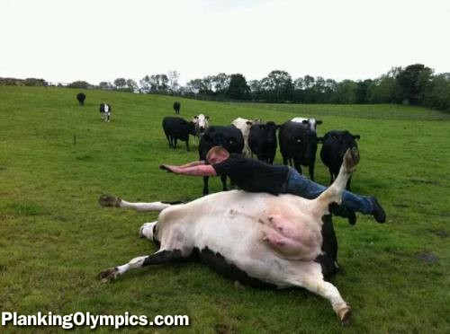 -planking-1328934564.jpg
