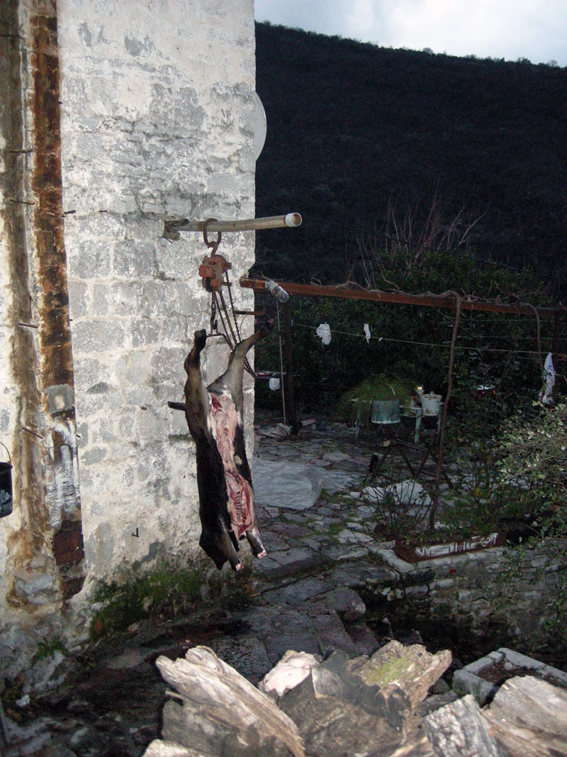 Уединенный-дом-в-лесу-Черногория