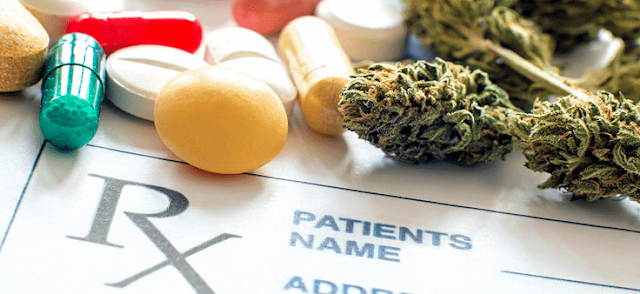 How to Identify the Right Marijuana Strain of Your Requirement