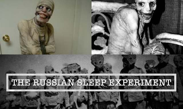 5 People Awake For 15 Days: True Story Or Hoax?