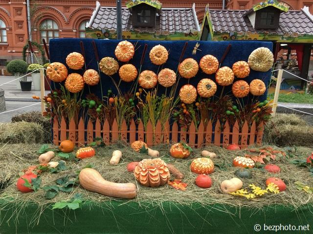 фестиваль золотая осень 2016 москва