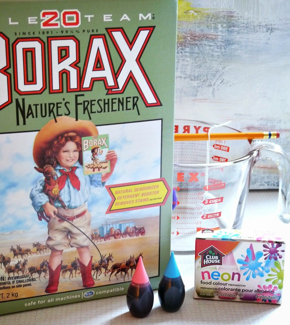 Supplies for making Borax crystals