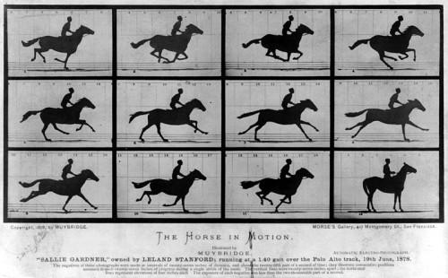 2eeb9b1918d Hella Heaven  Eadweard Muybridge and the integrity in science