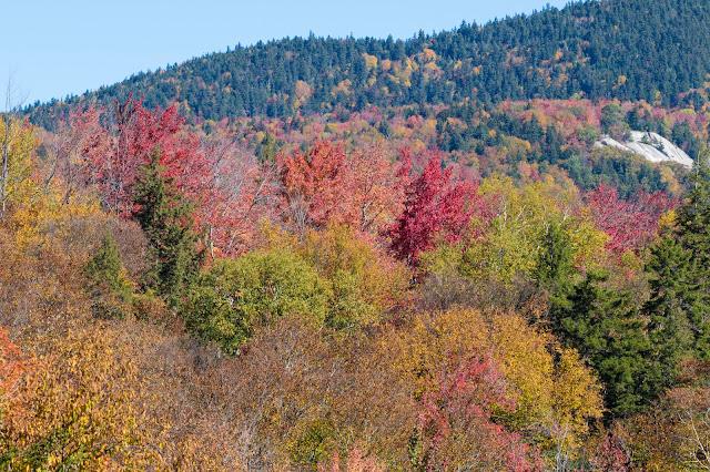 Foliage-Kancamagus Hwy e White mountains