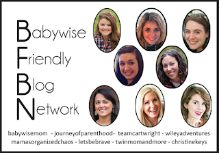 Babywise bloggers