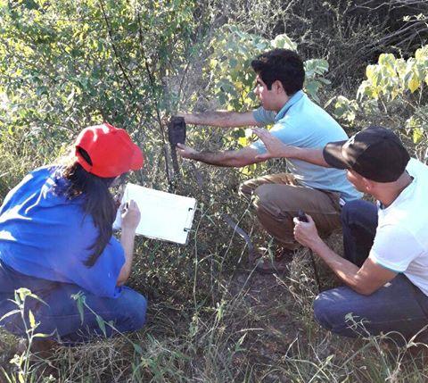 Instalan cámaras trampas en el Parque Nacional Defensores del Chaco ...
