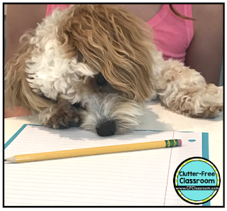 Do you have reluctant writers in your class? Most teachers have kids who struggle with writing and students who lack motivation. This post will teach you how to get all your students writing using prompts, paragraph of the week, and a system for writing.