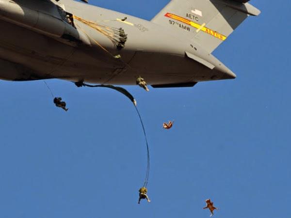 Militares dos EUA tem usado gatos de guerra em campo!