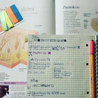 bujo, bullet journal, nauka, biologia, planowanie, kolorowo