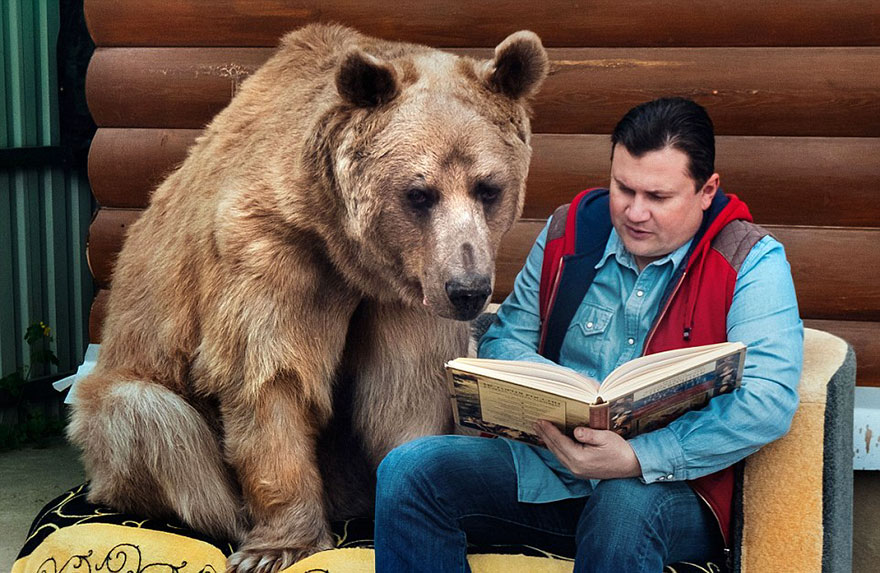 "Russian Couple Adopted An Orphaned Bear 23 Years Ago, And They Still Live Together - ""We have never been bitten by Stepan"""