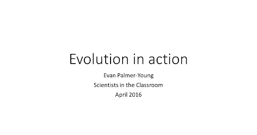 Scientists in the Classroom, Part II