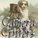 camera critters, dog link up
