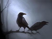 Вороны распознают «злых» и «добрых» людей