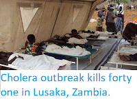https://sciencythoughts.blogspot.com/2017/12/cholera-outbreak-kills-forty-one-in.html