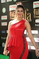 Meenakshi Dixit in Red One Shoulder Red Zipped up gown at IIFA Utsavam Award 65.JPG