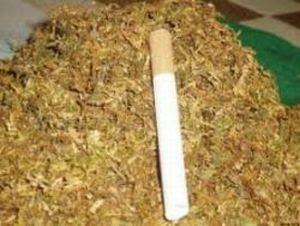 цигари и тютюн