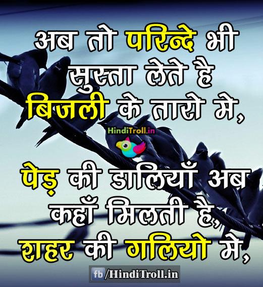 Ab To Parindhey Bhi Susta Lete Hai Savetree Hindi Wallpaper