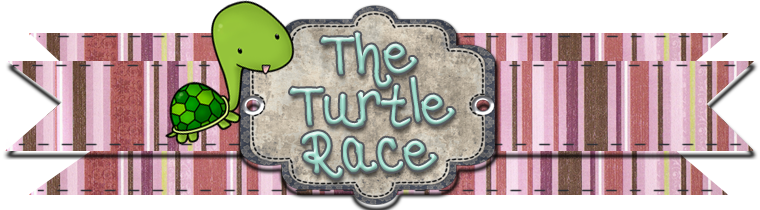The Turtle Race