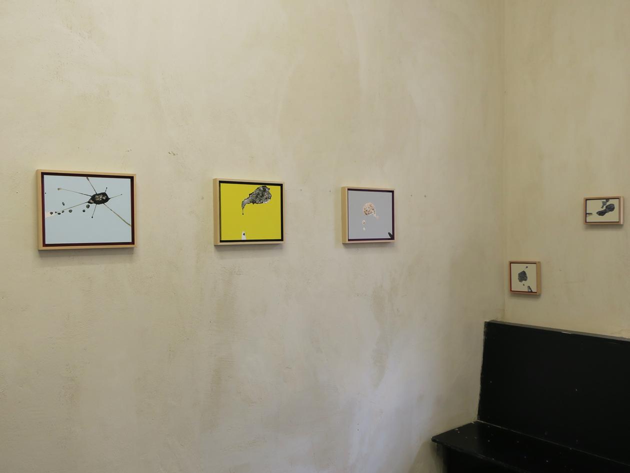 Some Installation Shots.