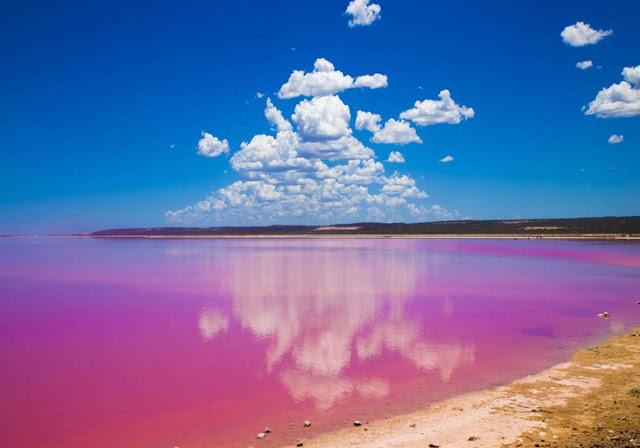 بحيرة هيلير البحيرة الوردية باستراليا Lake Hillier