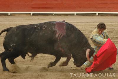 toro belicoso escapulario de plata de la feria del señor de los milagros de acho 2018 lima premios ganador triunfador