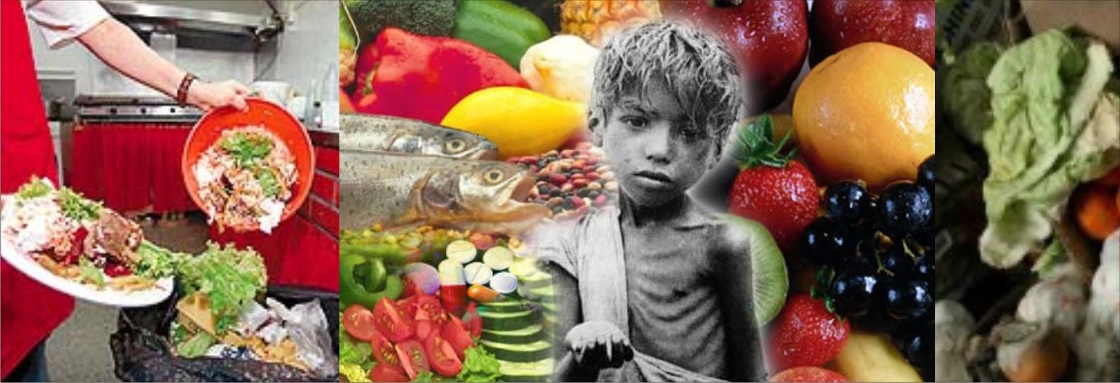 Frases Doação De Alimentos: Projeto AJO Ambiental: Desperdício De Comida No Mundo