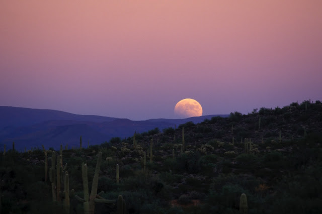 Lunar Eclipse seen from Arizona