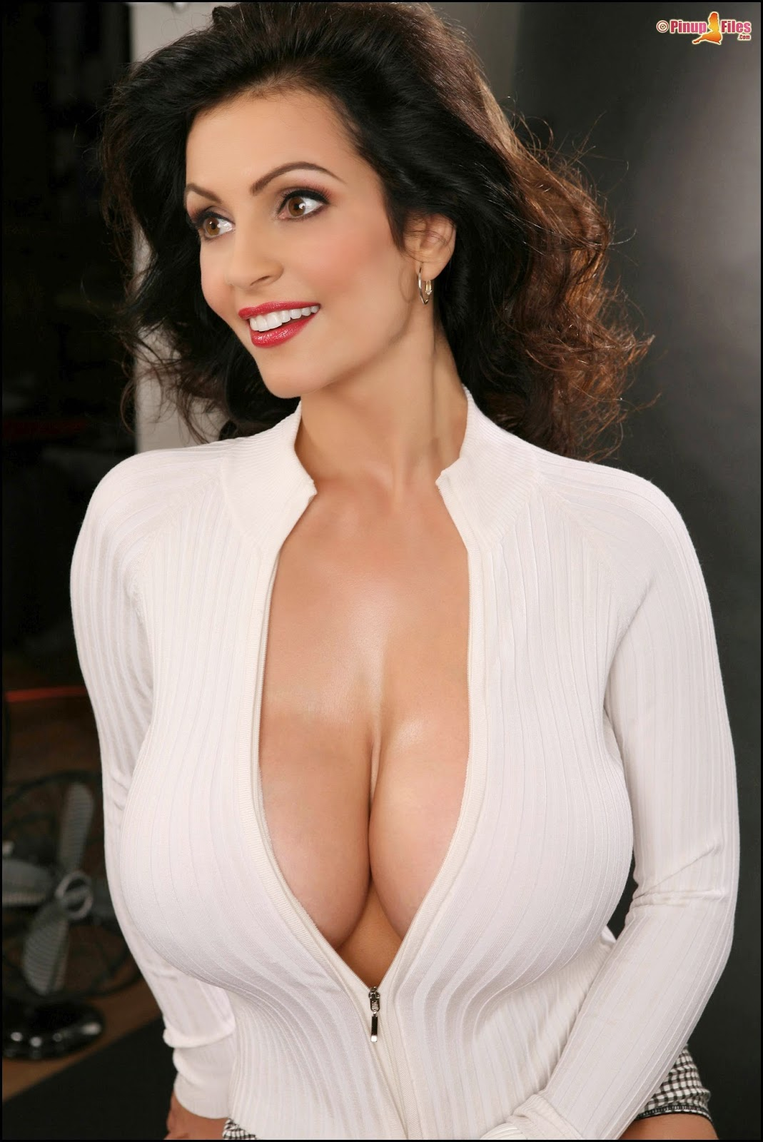 Denise Milani Archives Pinup Files Vol 5-9370