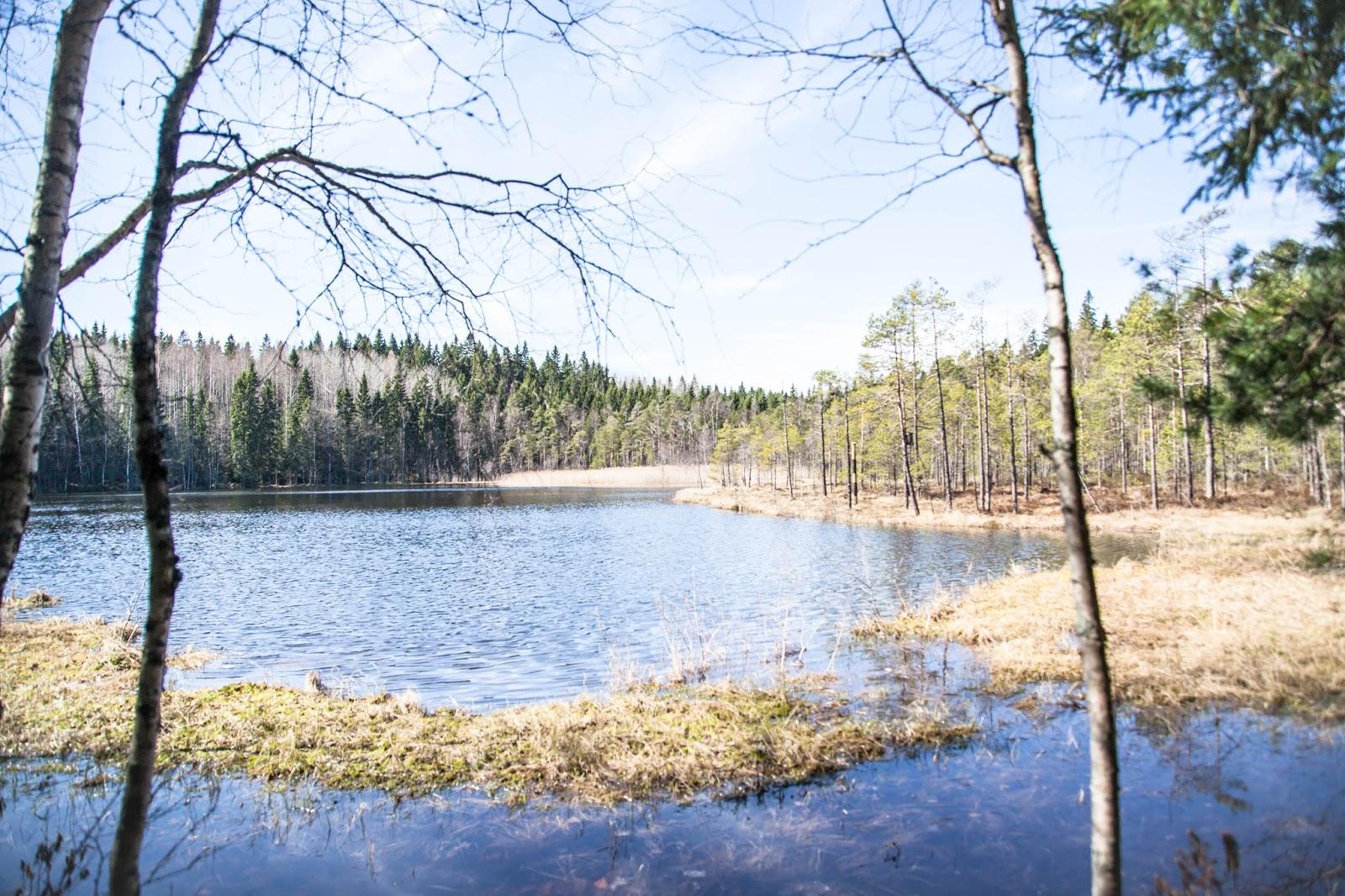suolijärvi hervanta