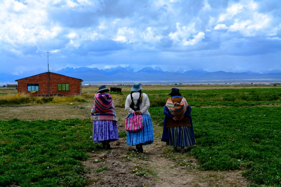 MI BOLIVIA AMADA: EN LAS ZONAS RURALES DE BOLIVIA, CASI LA
