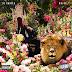 DJ Khaled- Major Key Album (Audio Stream)