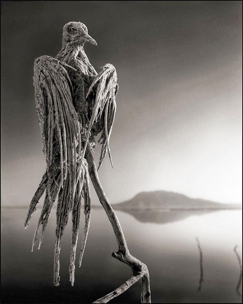بحيرة الموت
