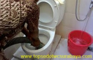 sedot wc surabaya timur top