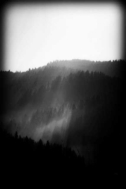 mountains and fog