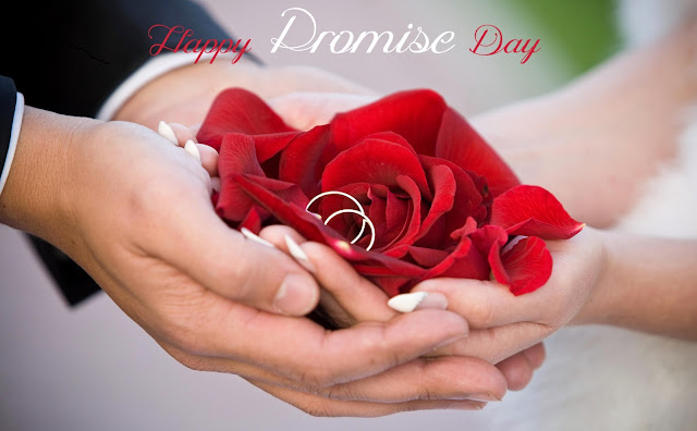 Best Promise day status Shayari image