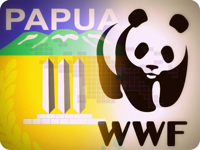 Pemprov Papua dan WWF Sosialisasi Pembiayaan Investasi Ekonomi