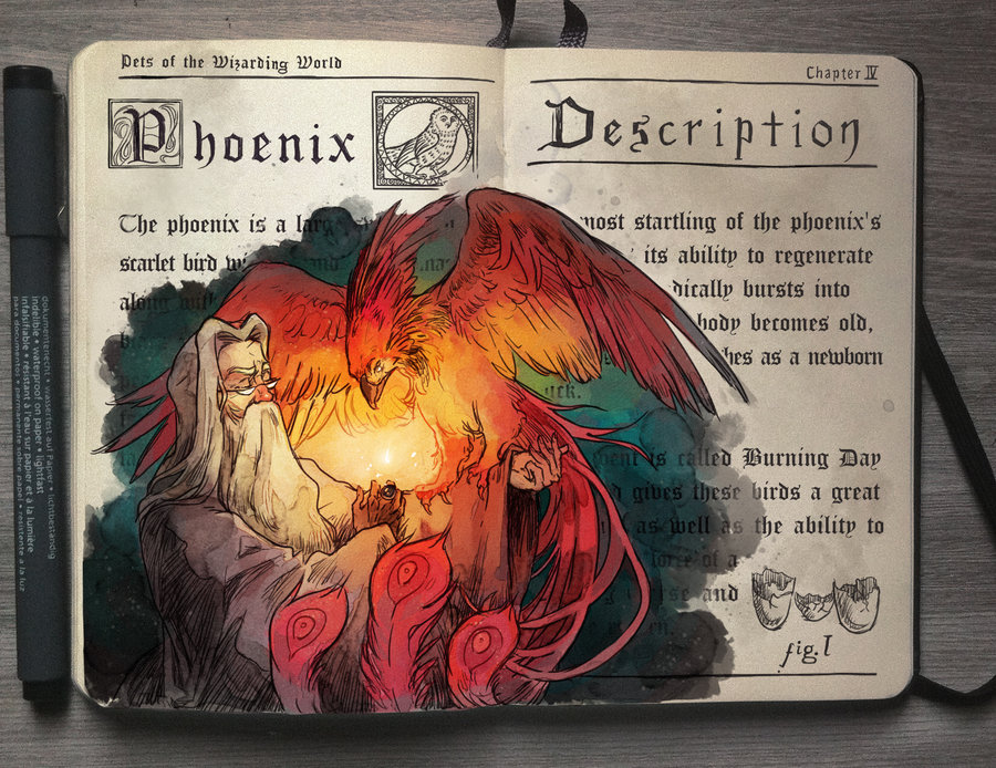 10-Albus-Dumbledore-and-the-Phoenix-Gabriel-Picolo-kun-Harry-Potter-Moleskine-Drawings-of-Wizard-Spells-www-designstack-co