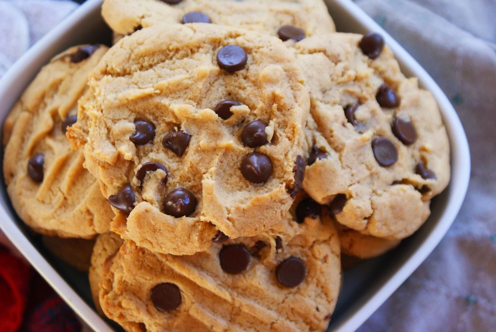 zara shopz panduan tips percuma buat kek biskut Resepi Biskut Snow Cheese Enak dan Mudah