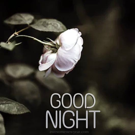 HD Good Night Pictures