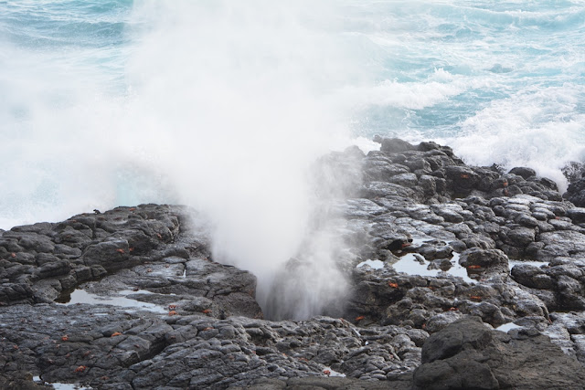 Punta Suarez on Espanola Island  blowhole