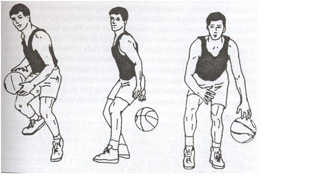 Pembelajaran Basket Smp Modul Pembelajaran Permainan Bola Basket Bagi Guru Modul Pembelajaran Permainan Bola Basket Bagi Guru Penjas Orkes Smp